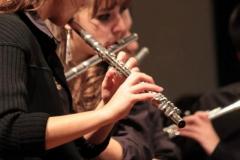prove_orchestra_symphoniae_17