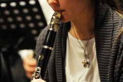 prove_orchestra_symphoniae_34
